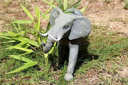 09- Elephant dAfrique