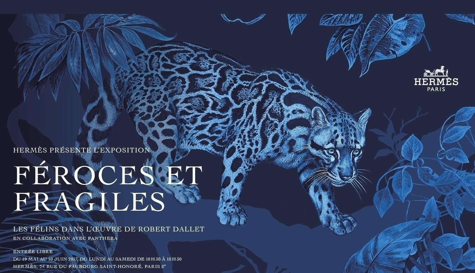 Accueil-Site-Exposition-Hermès-Paris-3